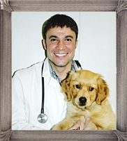 Dr. Alley veterinarian